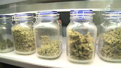 CHECK YOUR POT: Some products failed secondary total yeast, mold testing, Nevada Dept. of Taxation says