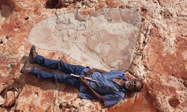 Dinosaur-footprint_1490625567218-159532.jpg86422536