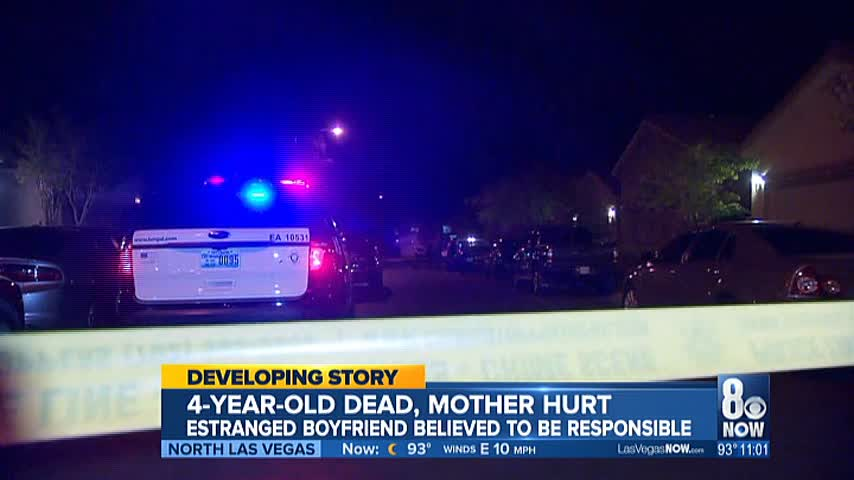 PD- 4-year-old child killed in murder-suicide in southwest v_83772583