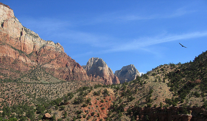 Zion_National_park_700_1502825372311.jpg