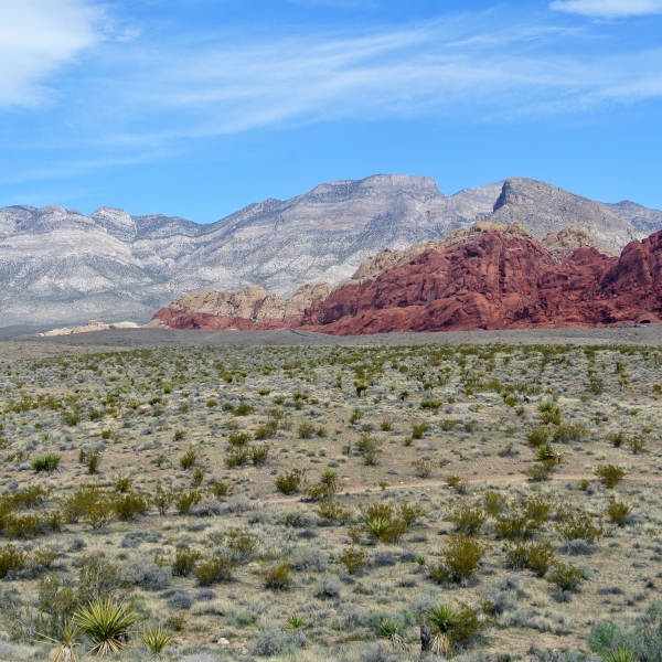 Red_Rock_Canyon_National_Conservation_Area_view_031513_1508288803655.JPG