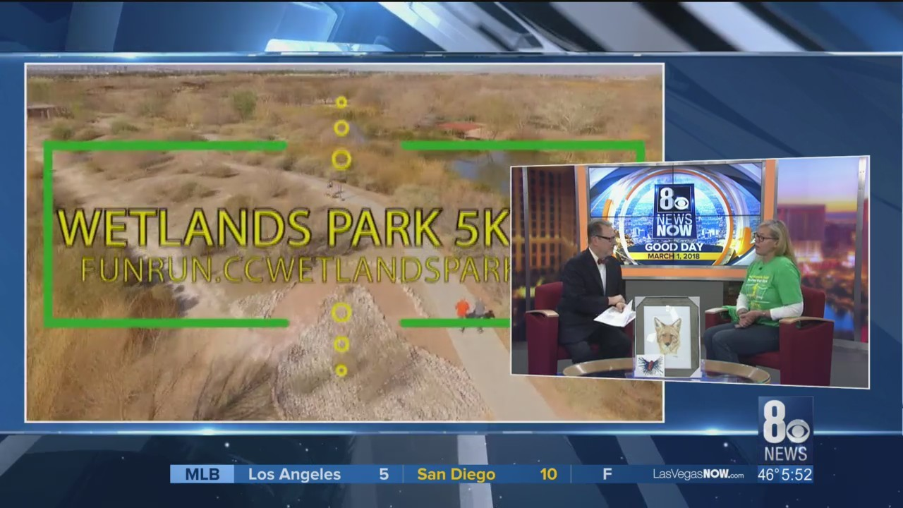 Wetlands Park to celebrate the 5th anniversary of its Nature Center on Saturday