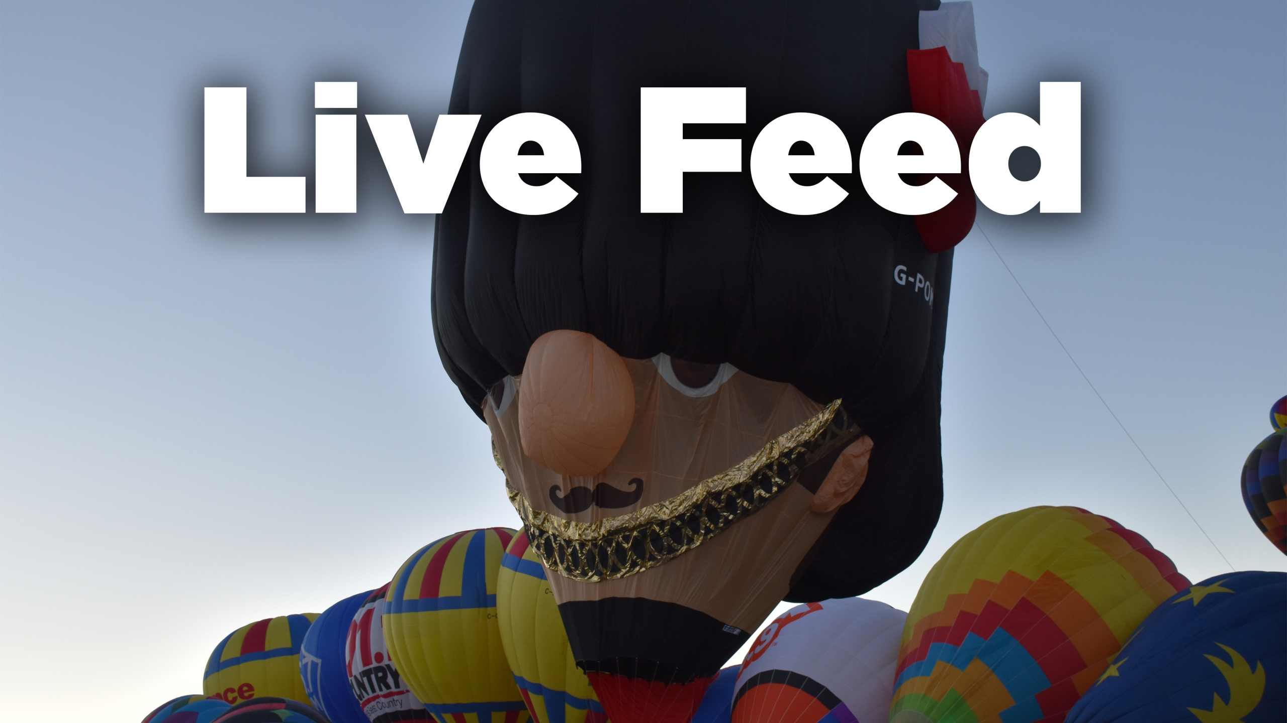 BF-live-feed