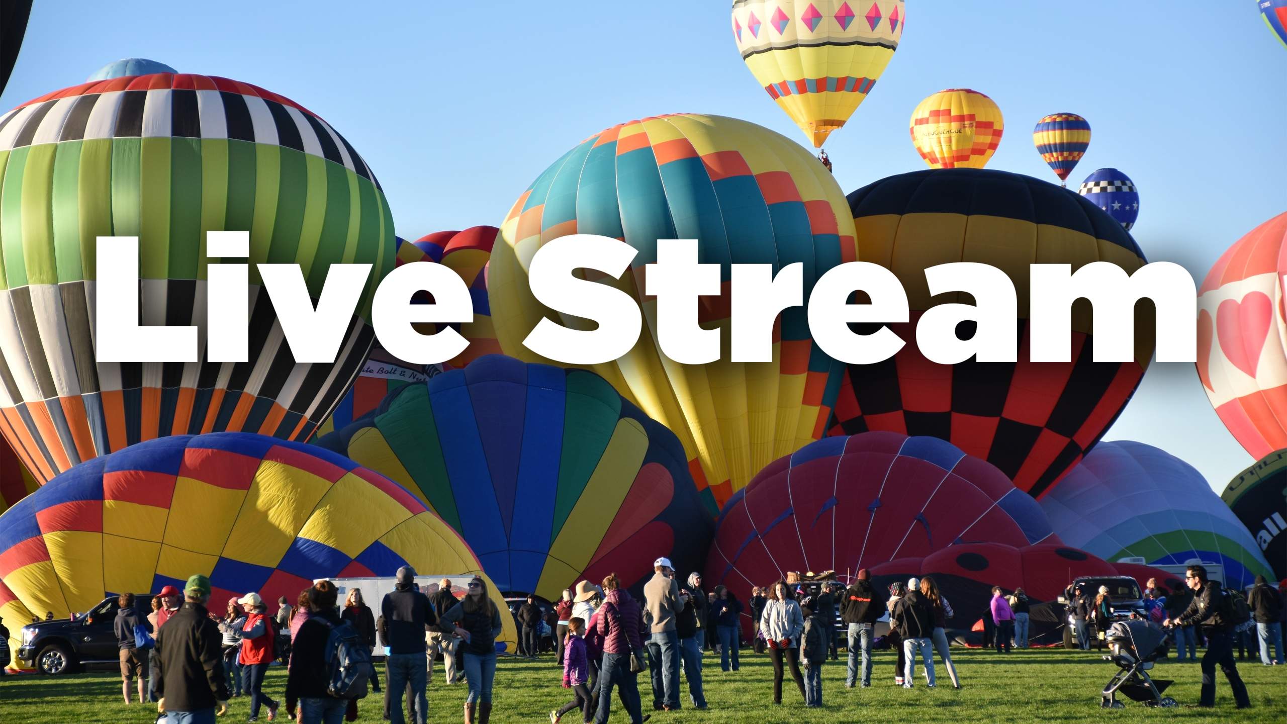 BF_live_stream