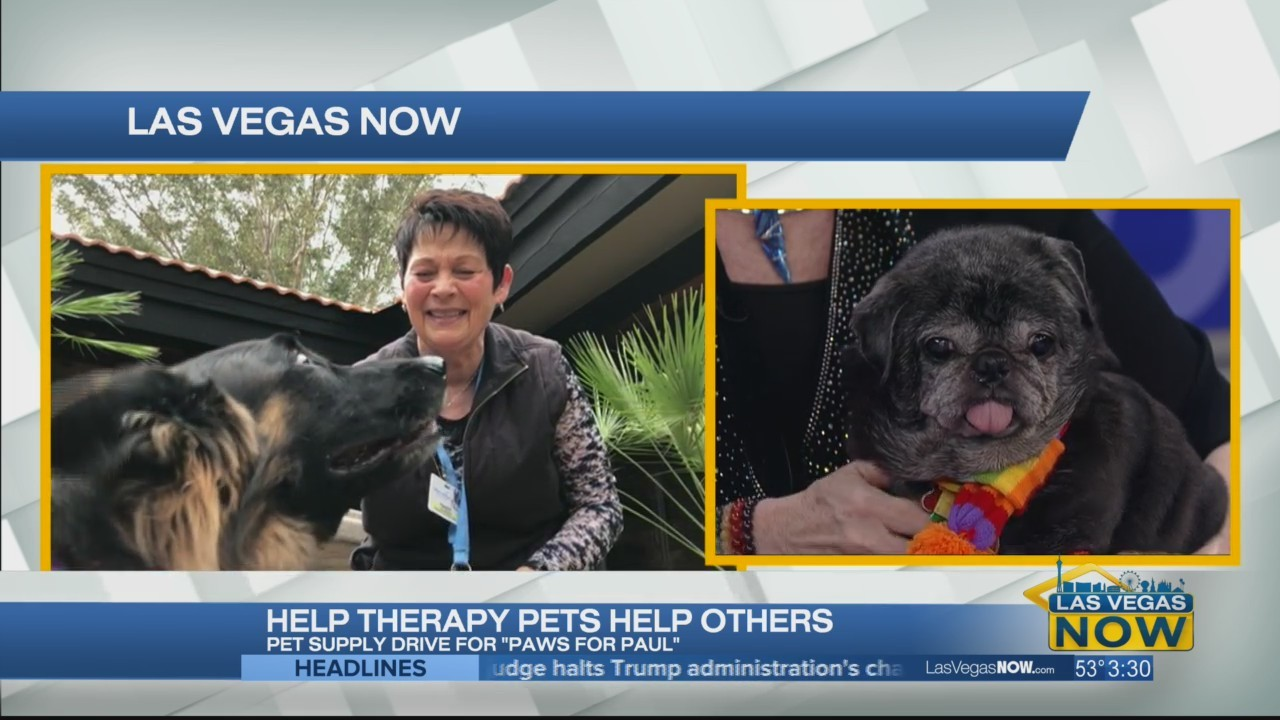 Help therapy pets help others