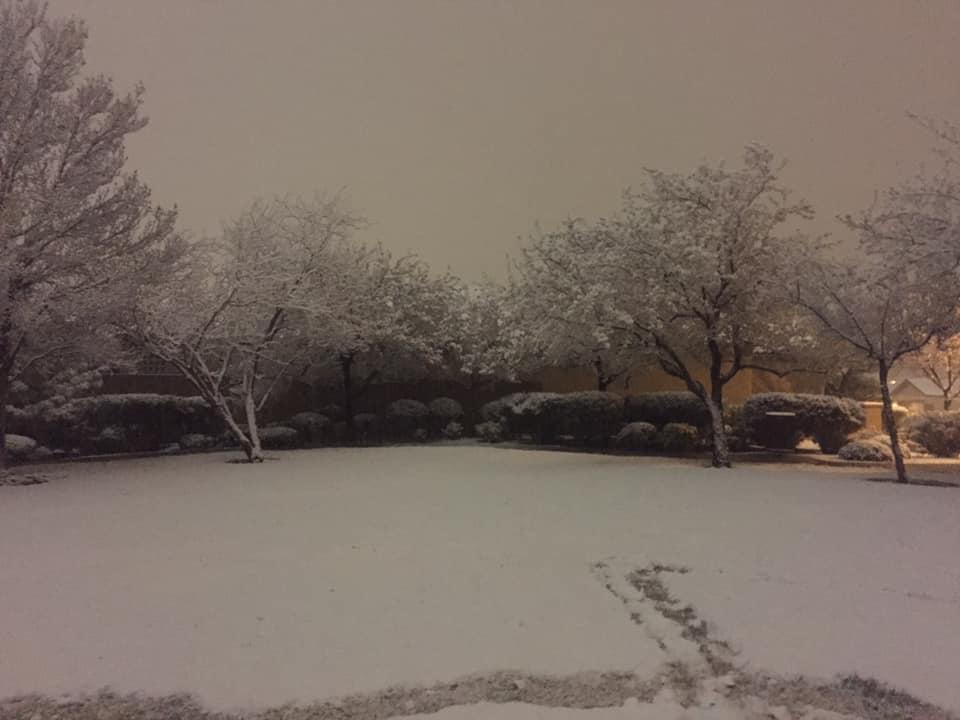Snow_pict_Amy_Schroeder_Fisher_1550727816050.jpg