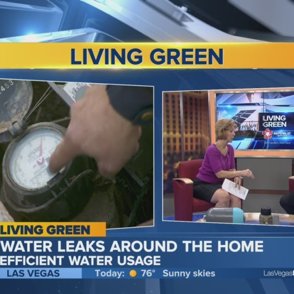 Living Green: New smart technology can save you big money on water bills.