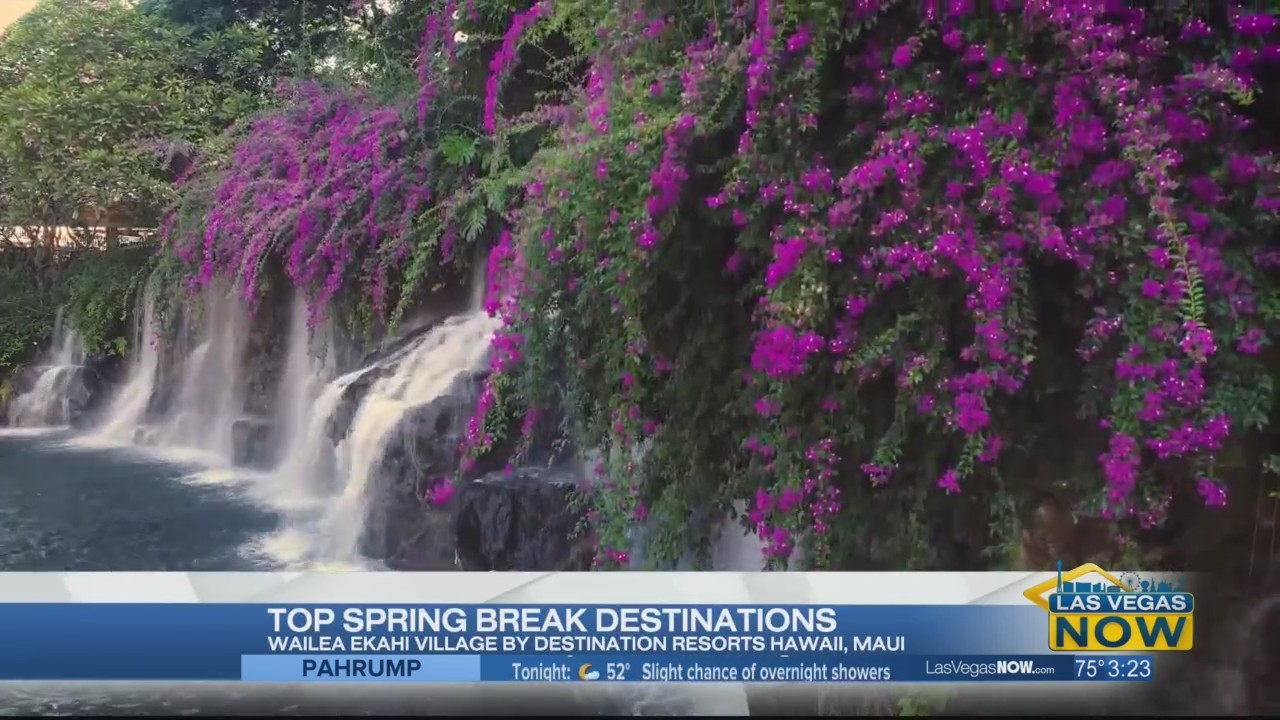 Spring break vacations with Travelzoo