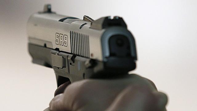 Handgun_3369723003865138-159532