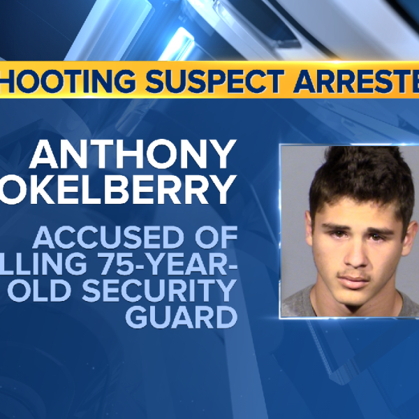 anthony okelberry mugshot_1556559855942.png.jpg
