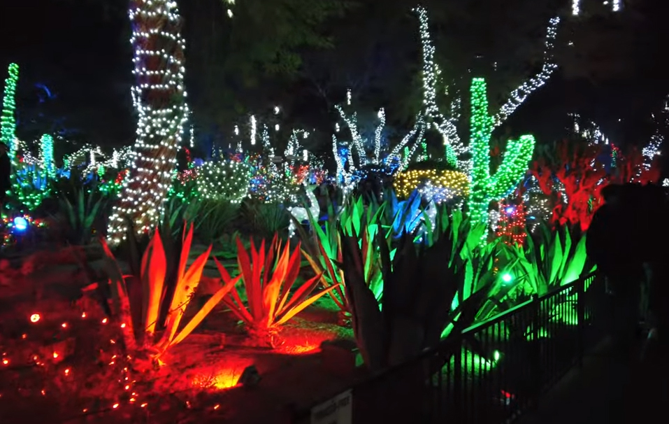 Ethel M Christmas Lights 2021 Reservations For Ethel M Chocolates Holiday Cactus Garden Nearly Booked Up Klas