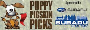 8 news now puppy pigskin picks
