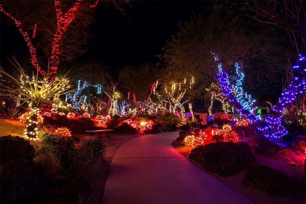 Ethel M Christmas Lights 2021 Lights Of Love Opens At Ethel M Cactus Garden Ahead Of Valentine S Day Klas